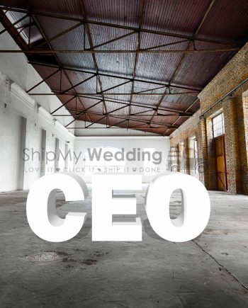 ceo big letter rental